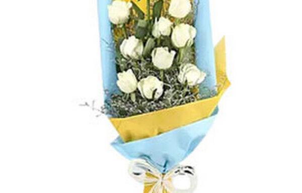 Beautiful carnation bunch(code:232)