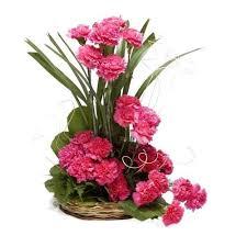 Carnation basket (Code:37)