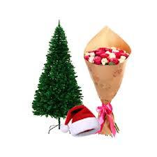 Amazing Christmas Combo (code:156)