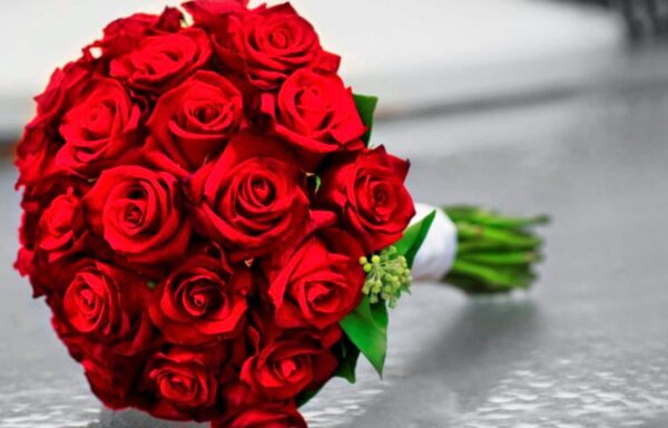 Bright red roses bouquet (code:207)