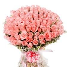 100 pink roses bunch for valentines day